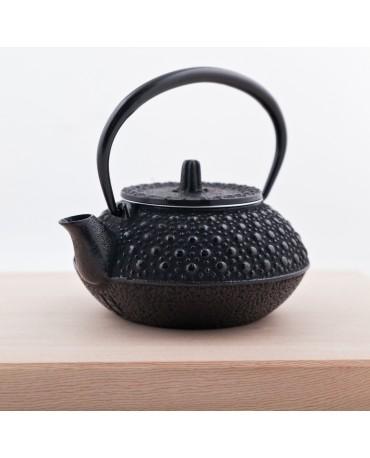 Ceainic de fonta Nanbu Kame 250 ml