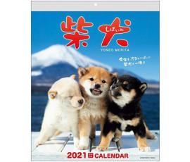 CALENDAR 2021 CATEI SHIBA YONEO MORITA ACL-11